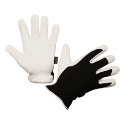 Winter Racer Gloves - Size 11/XXL